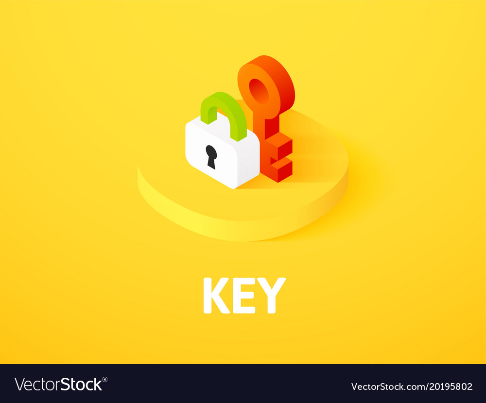 Key isometric icon isolated on color background vector image