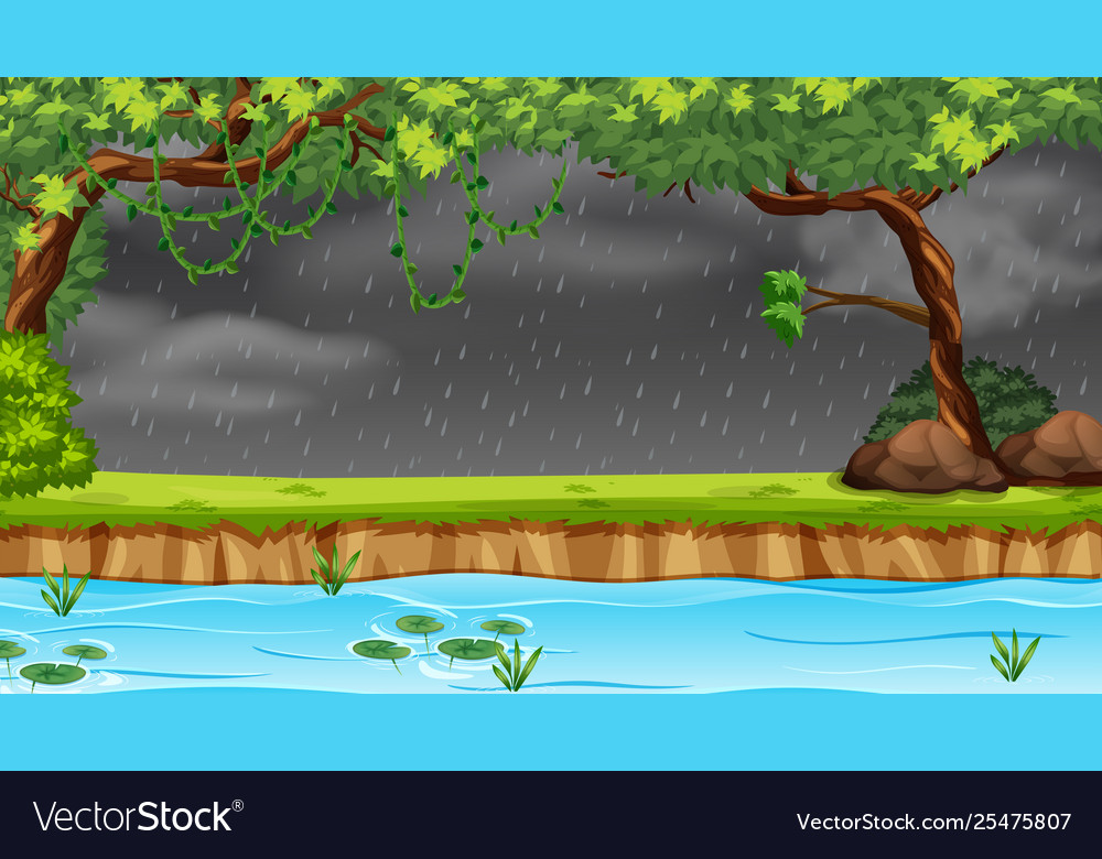 Raining in forest