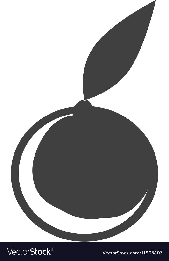 Silhouette fruit orange graphic icon vector image