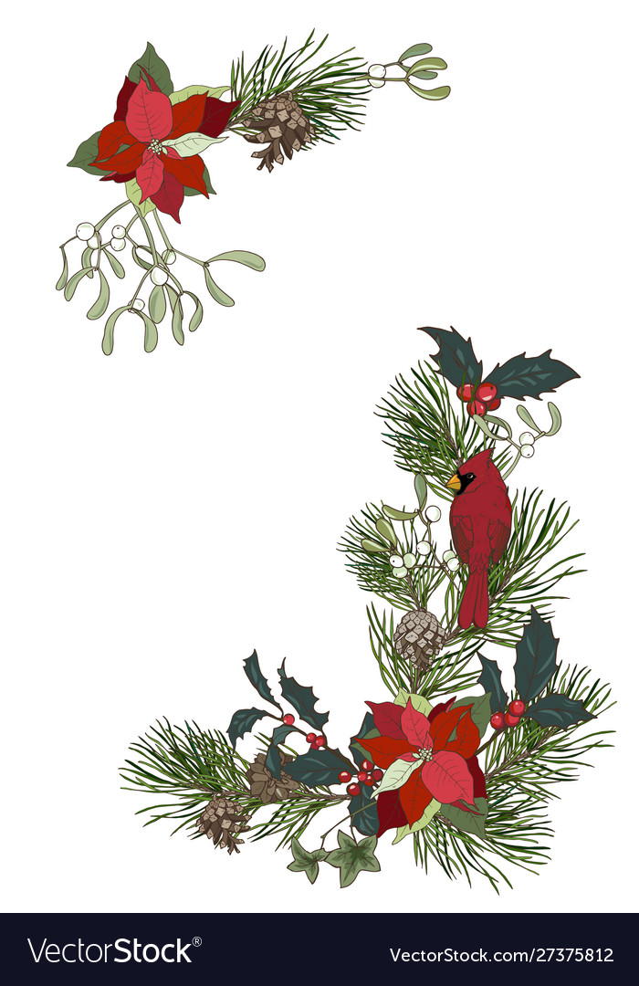 Christmas Plants Composition Royalty Free Vector Image