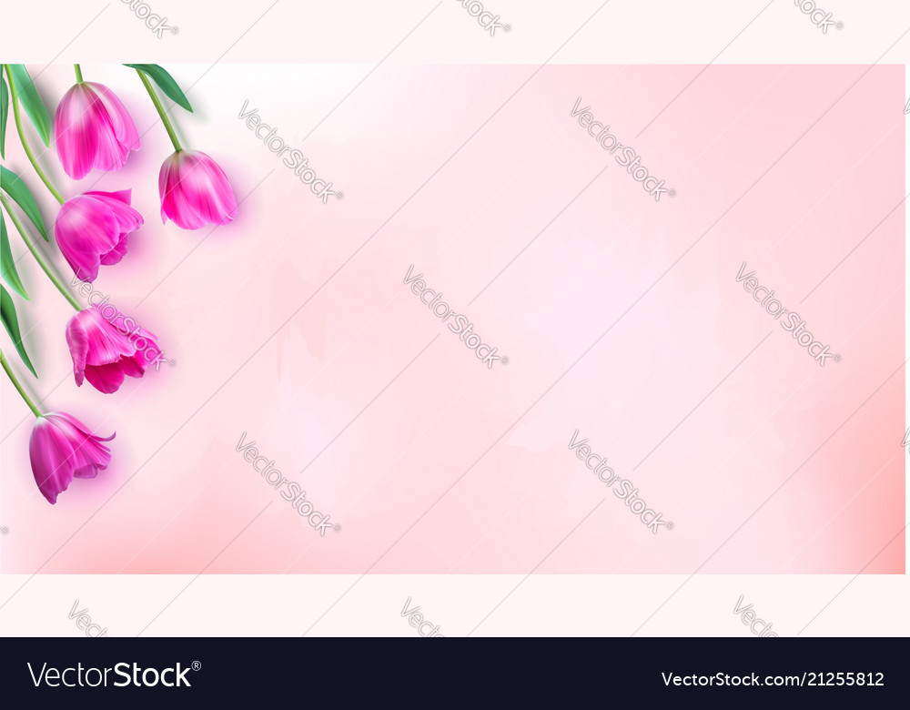 Floral background with bouquet of tulips top view