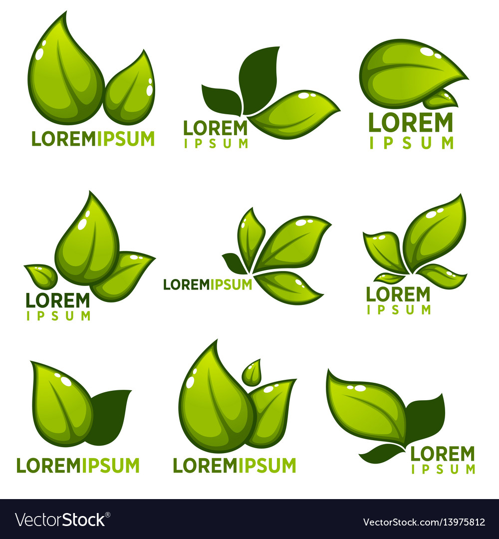 Glossy leaves and plants empblems icons and