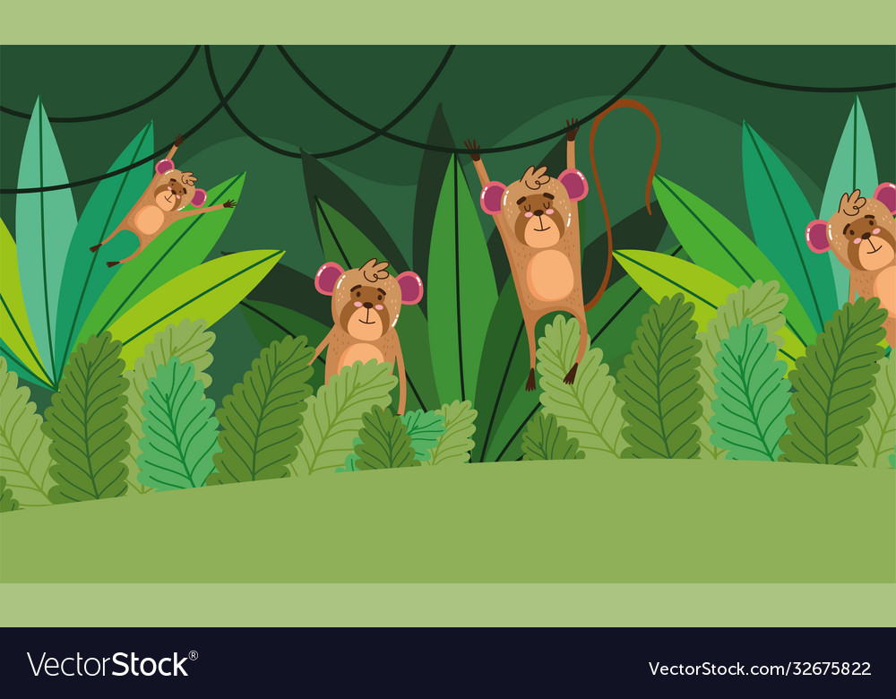 Cute monkeys trees grass forest nature wild