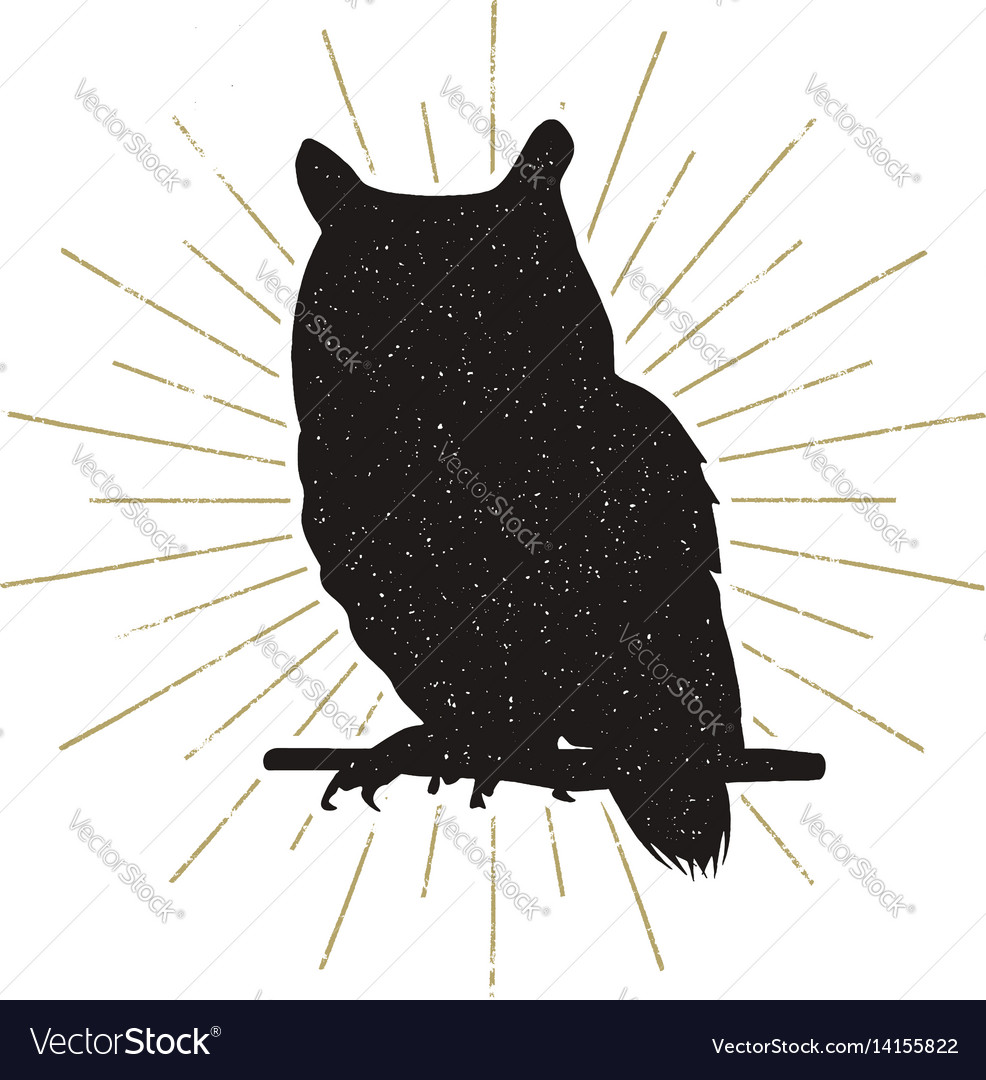 Owl silhouette shape isolated on white background