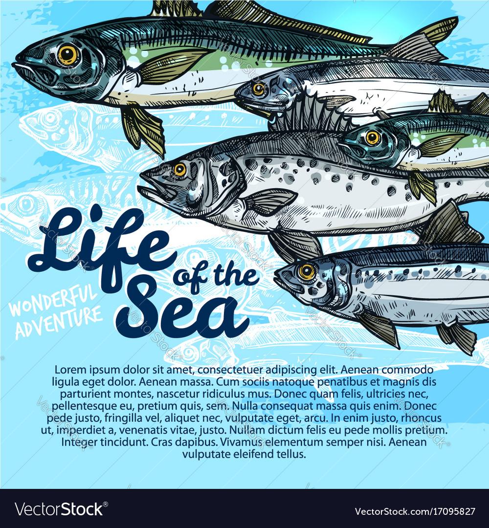 Poster of fish sea life or oceanarium