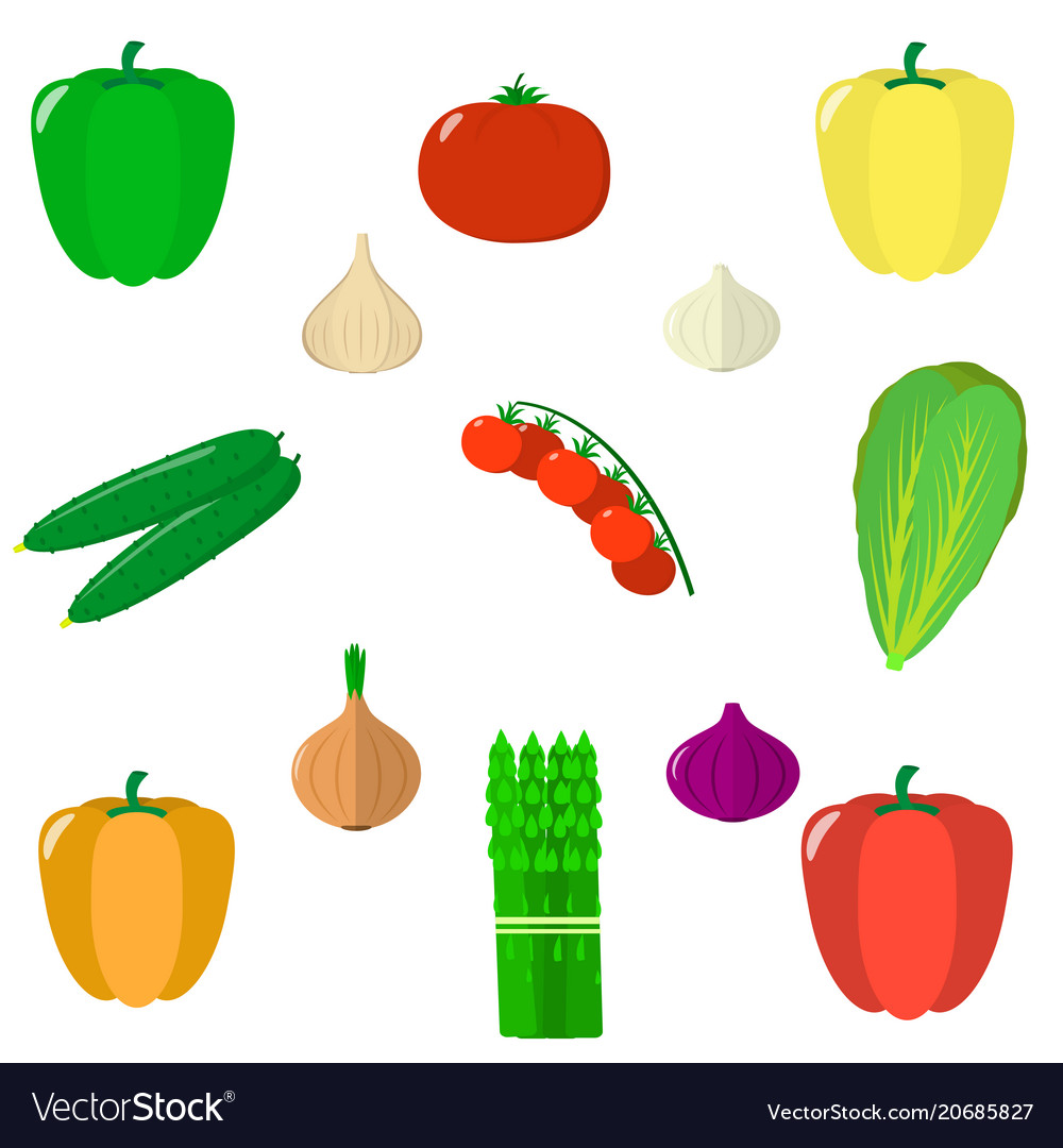 Set of vegetables isolated on white background vector image