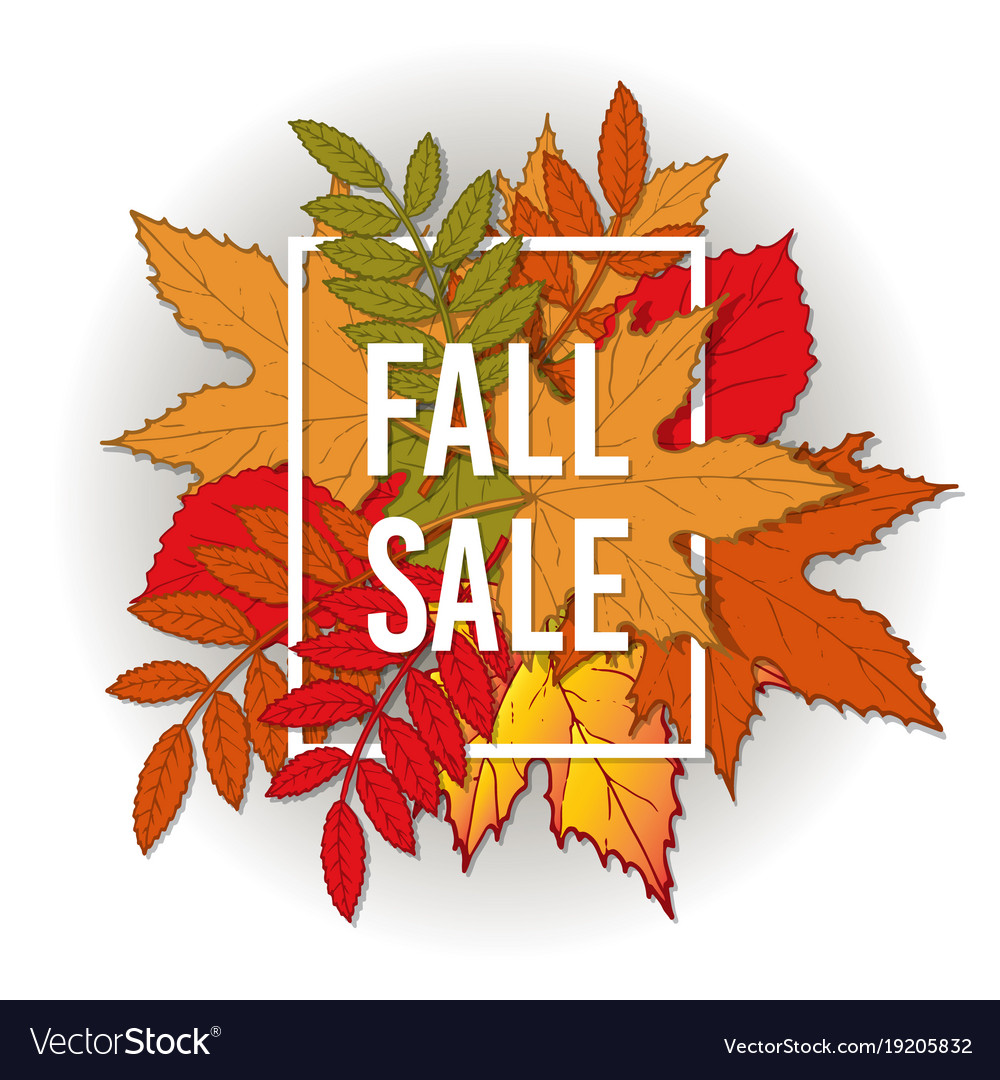 Autumn fall sale poster with color leaves