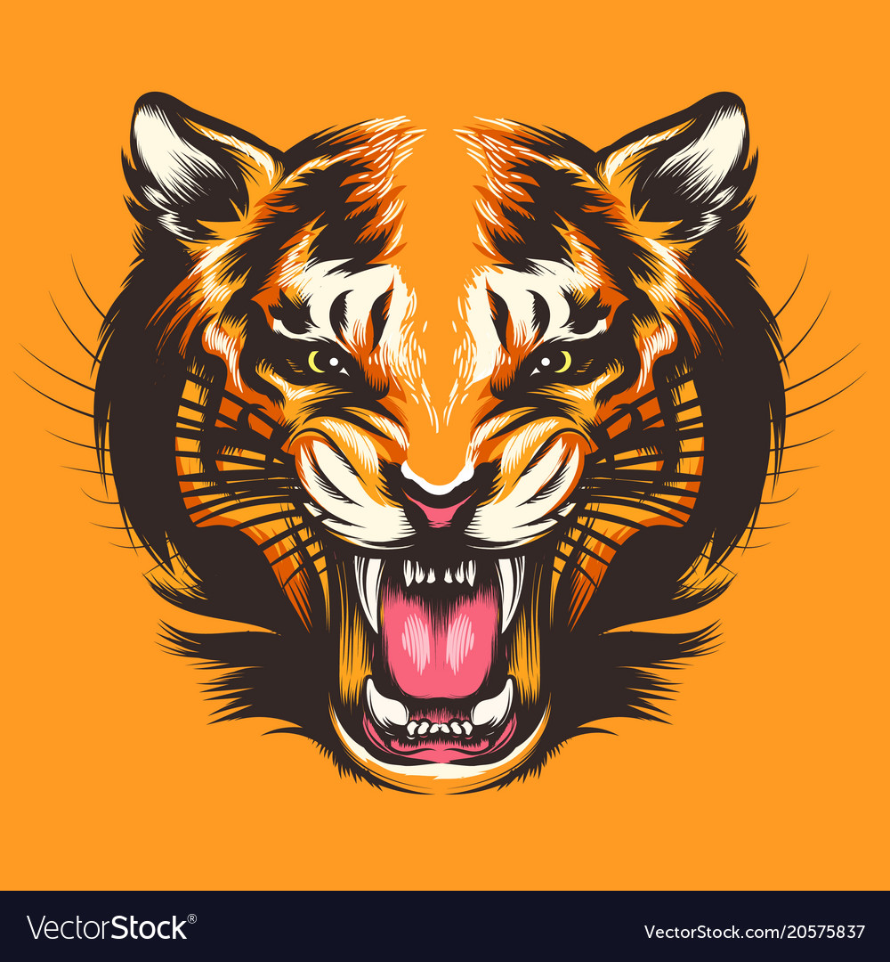 Colorful tiger face
