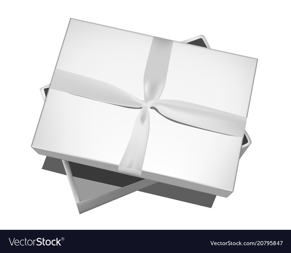 Grey gift box with bow isolated on white vector image