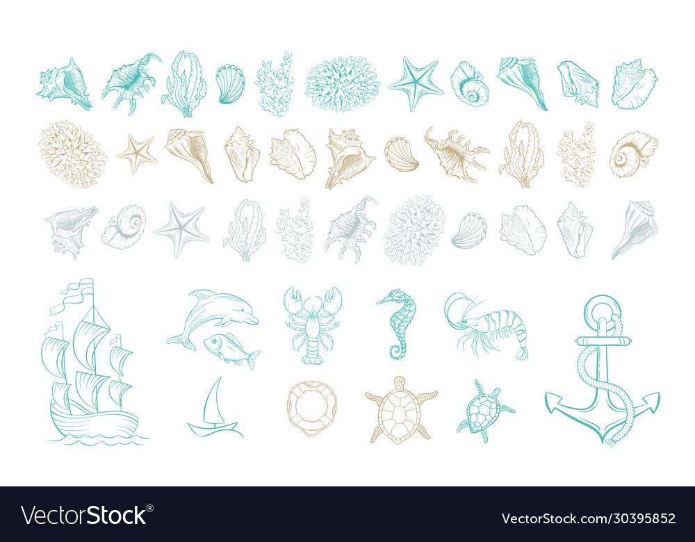 Marine line art icons ocean and sea beach shells