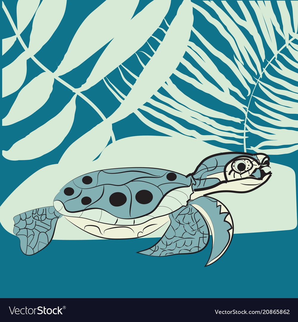 May 23 - world turtle day