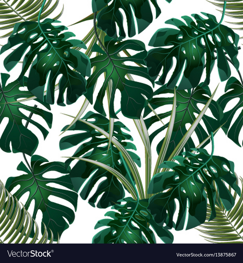 Jungle green thickets of tropical palm leaves and