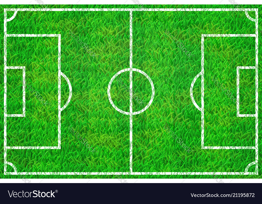 Soccer field with marking lines on grass texture