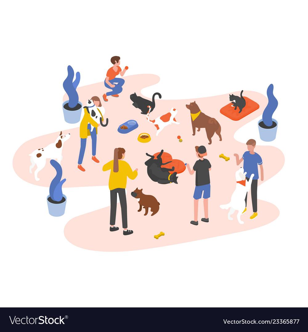 Group of people or volunteers feeding pets