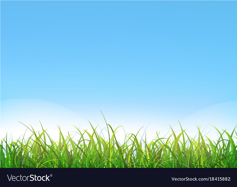 blue sky background with green grass royalty free vector vectorstock