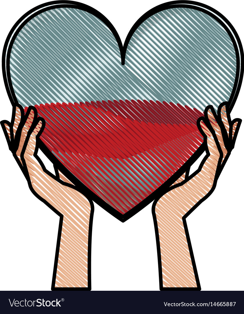 Drawing hands holding heart blood donation vector image