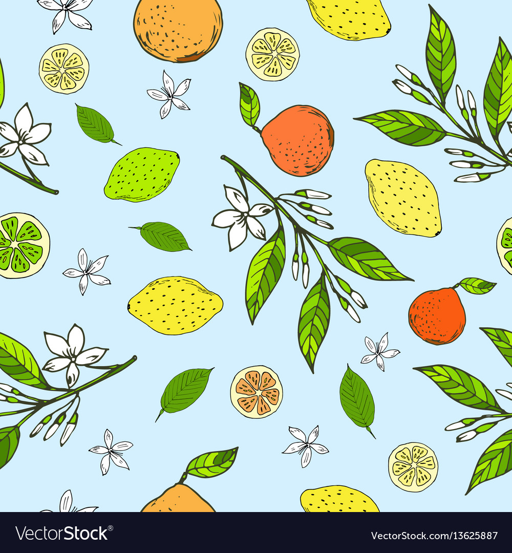 Seamless pattern with lemons oranges limes
