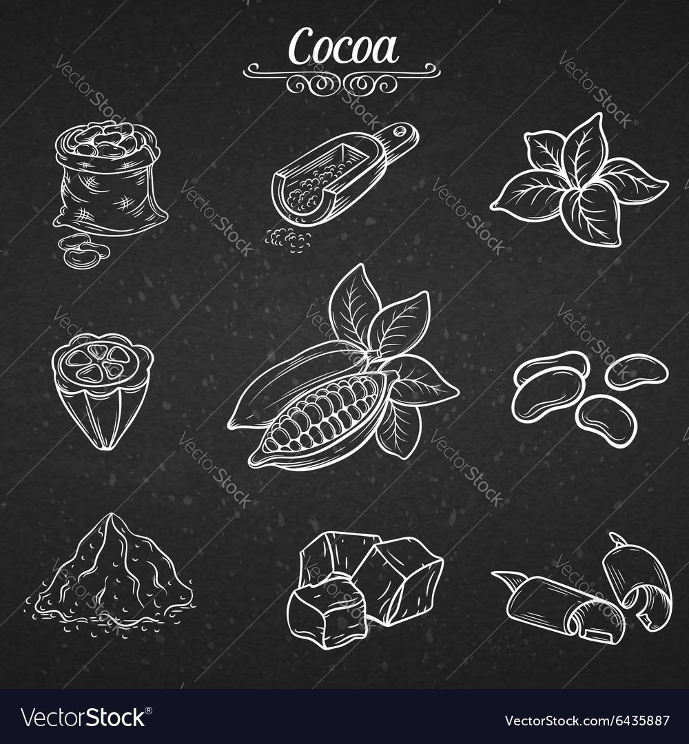 Set hand draw decorative cocoa chocolate