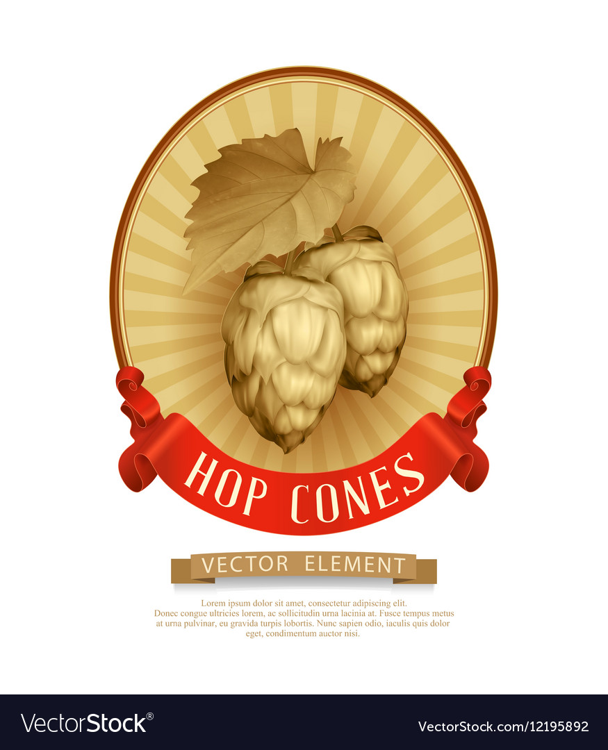 Label sticker with cones of hops in vintage style