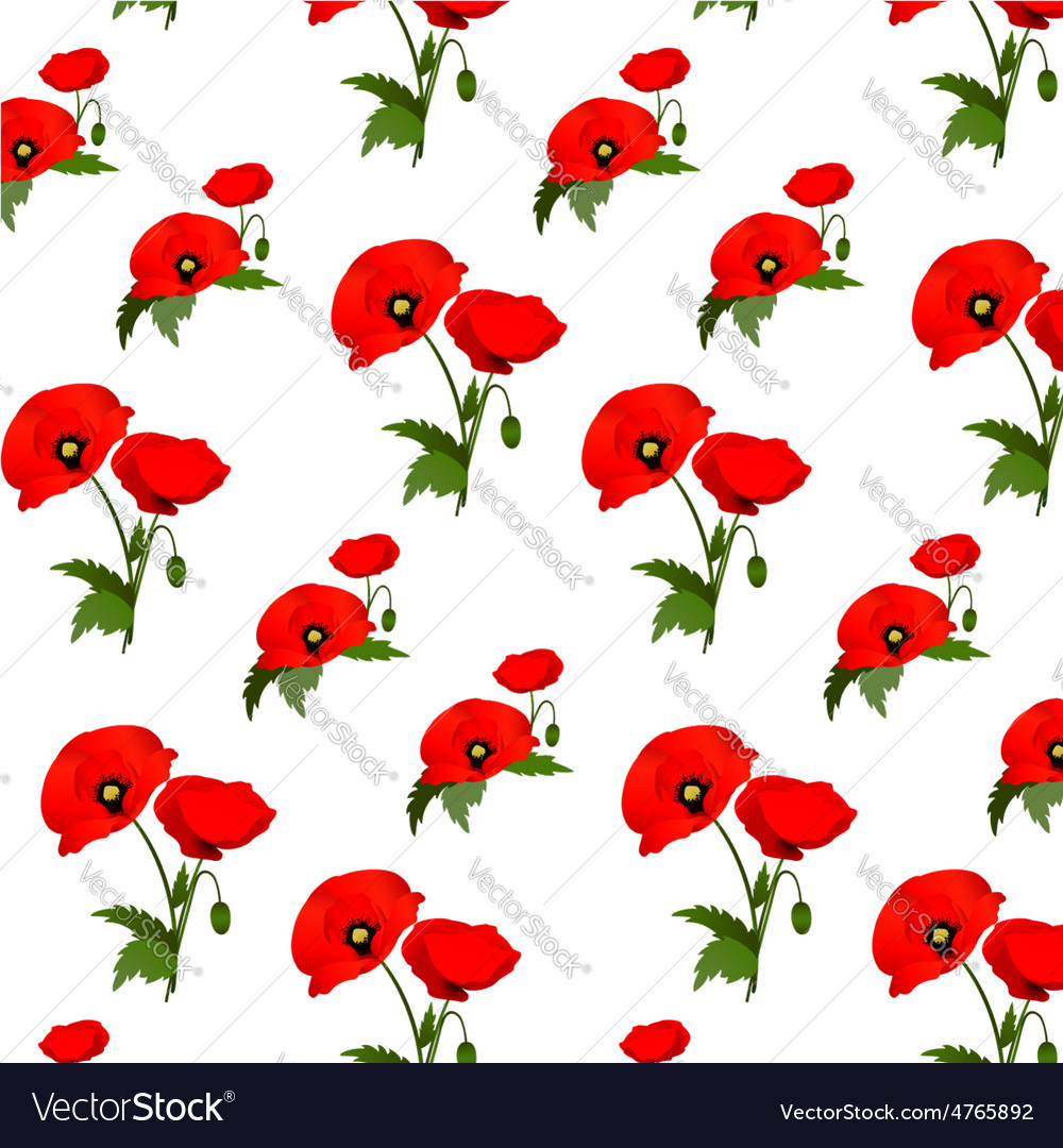 Seamless pattern with poppies flowers royalty free vector seamless pattern with poppies flowers vector image mightylinksfo