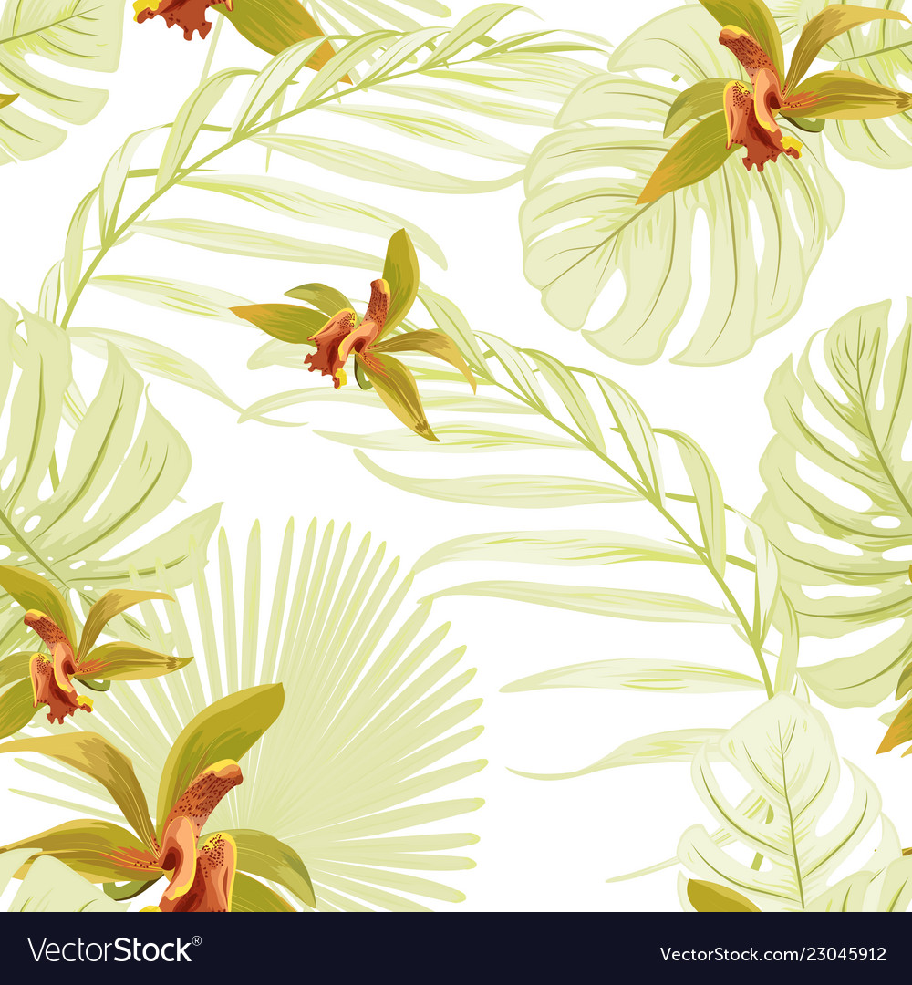 Seamless floral tropical pattern cattleya orchid