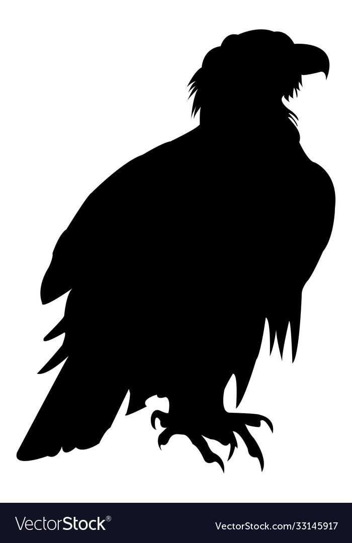 Eagle icon eagle falcon