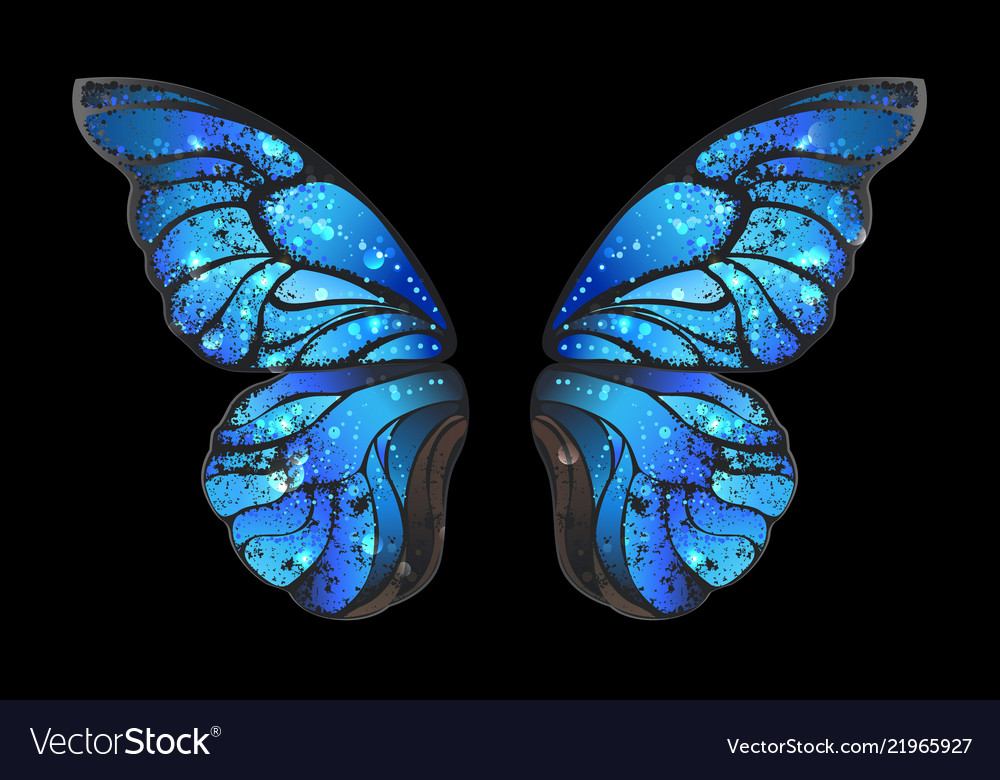 Blue Butterfly Wings Royalty Free Vector Image
