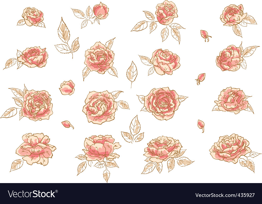 Collection Of Hand Drawn Roses Royalty Free Vector Image