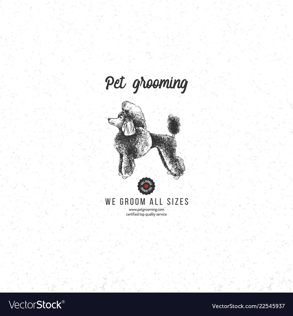 Pet grooming background with poodle
