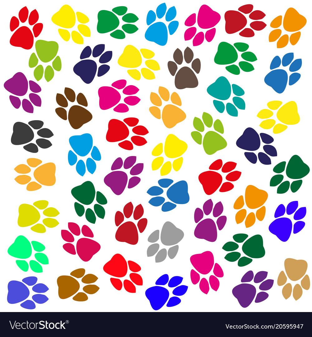 Multi-colored traces of animals