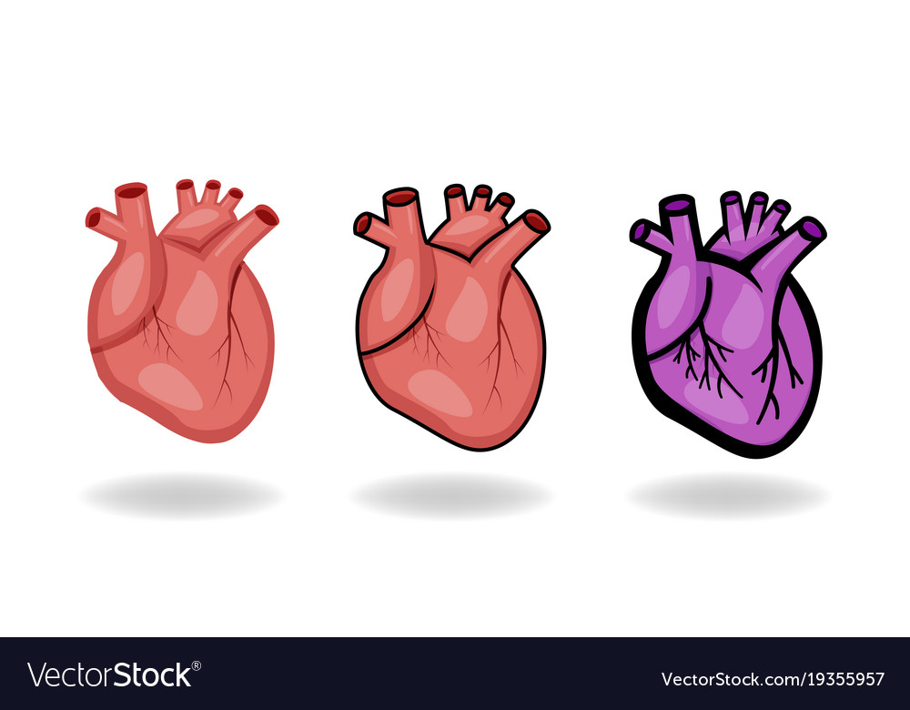 Set of human heart icons in flat style