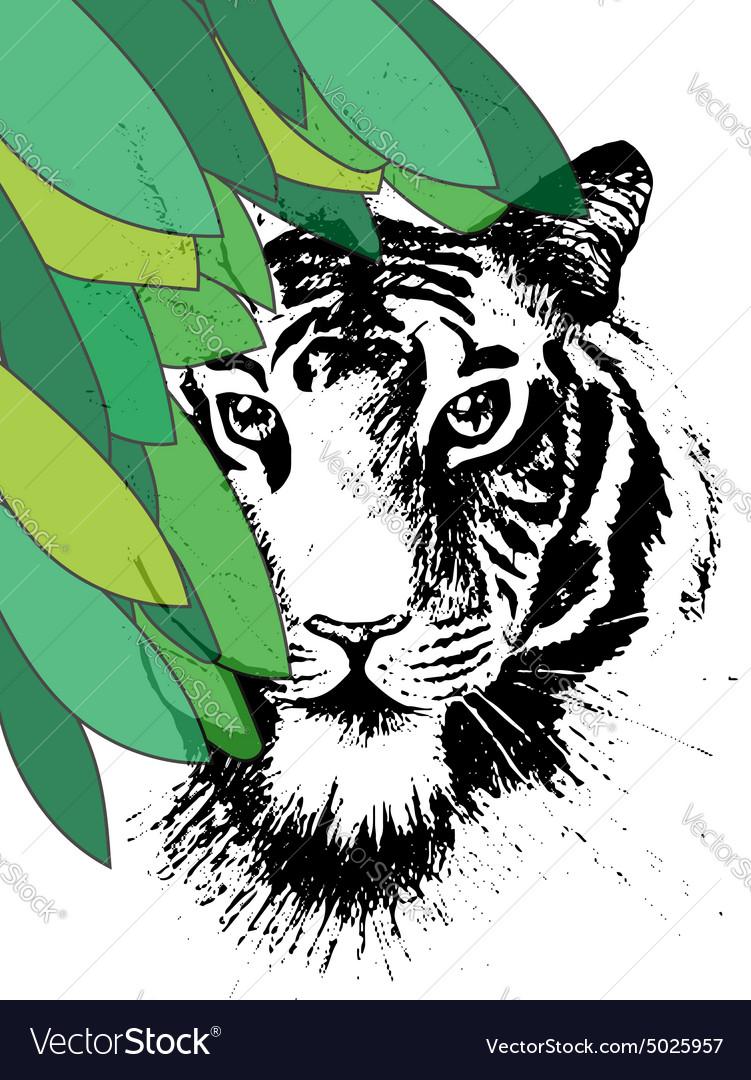 Tiger under leafes in