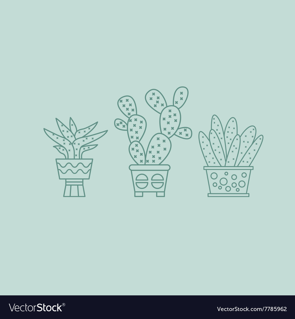 Plants and Cactuses in Pots Linear Set vector image
