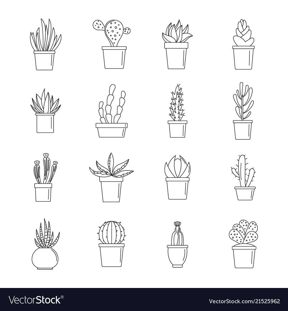 Succulent And Cactus Icons Set Outline Style Vector Image