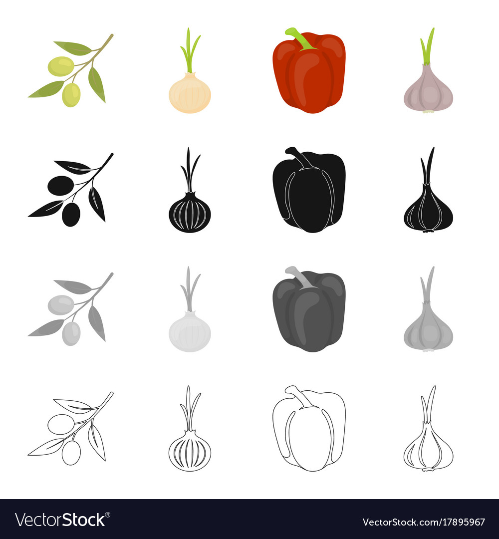 Salad vegetarian food and other web icon in