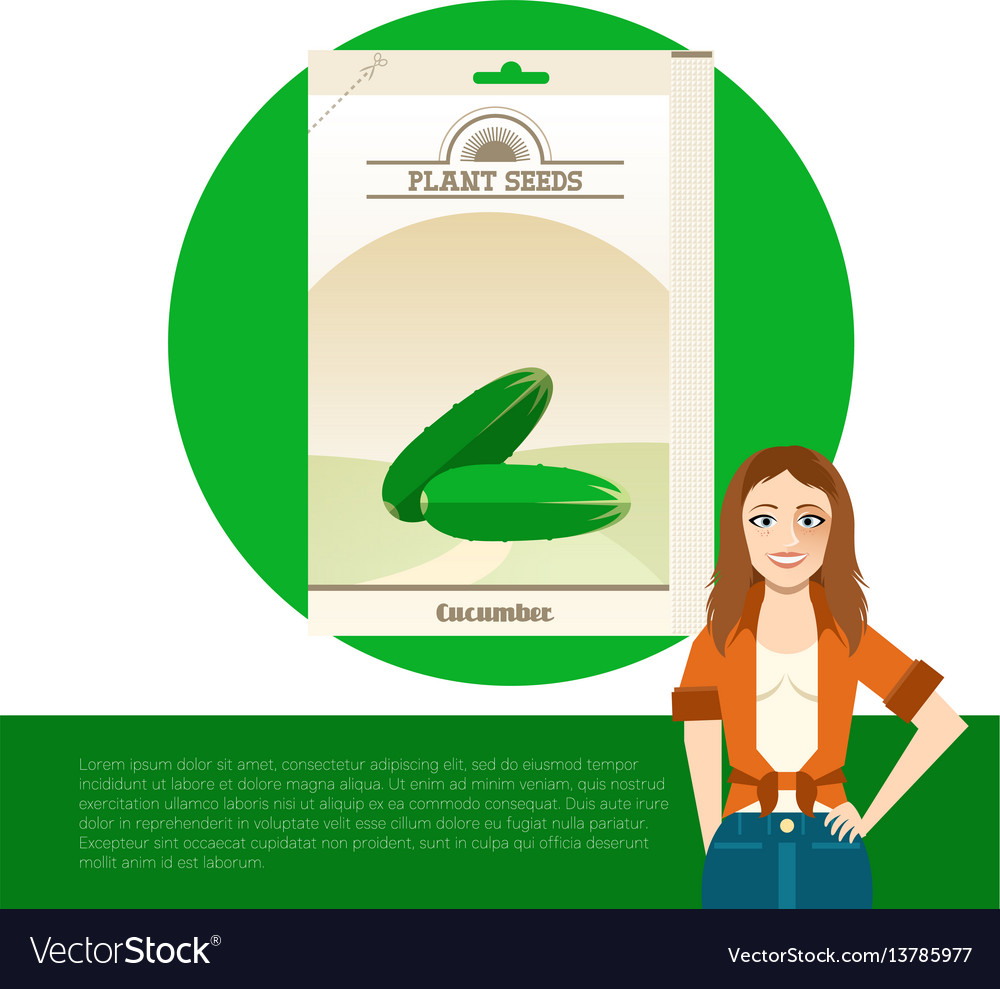 Pack of cucumber seeds icon