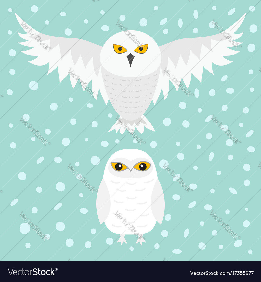 White snowy owl sitting flying bird with wings