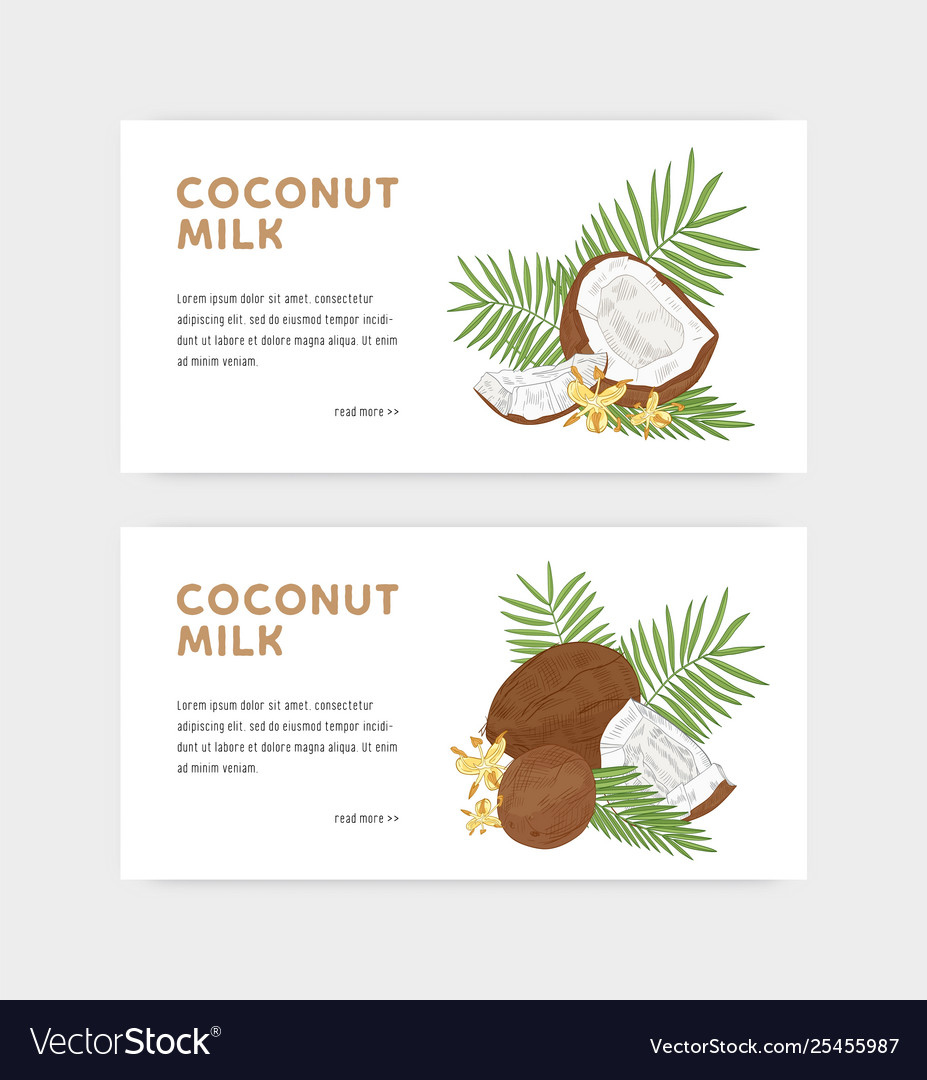 Bundle web banner templates for coconut milk