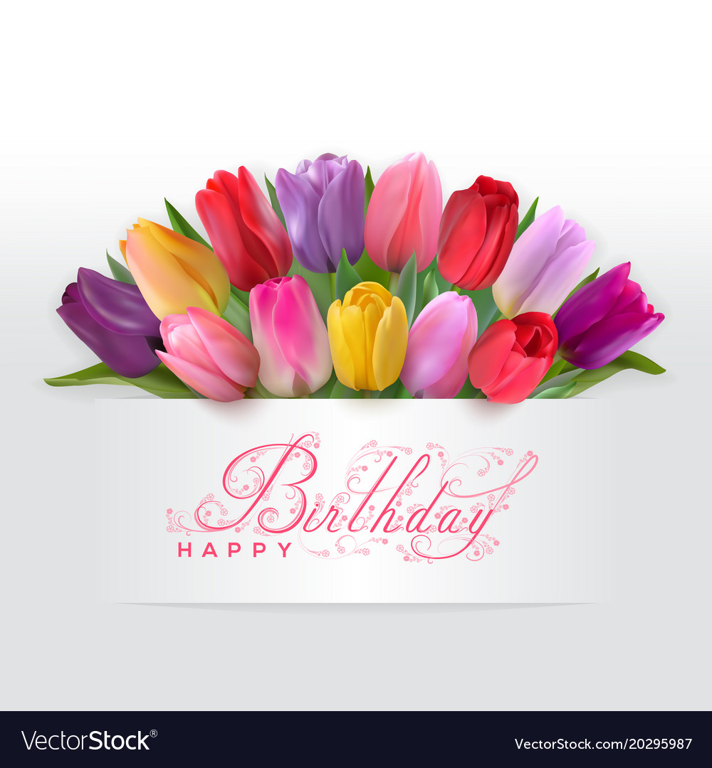 Happy Birthday Card With Red Tulips Royalty Free Vector