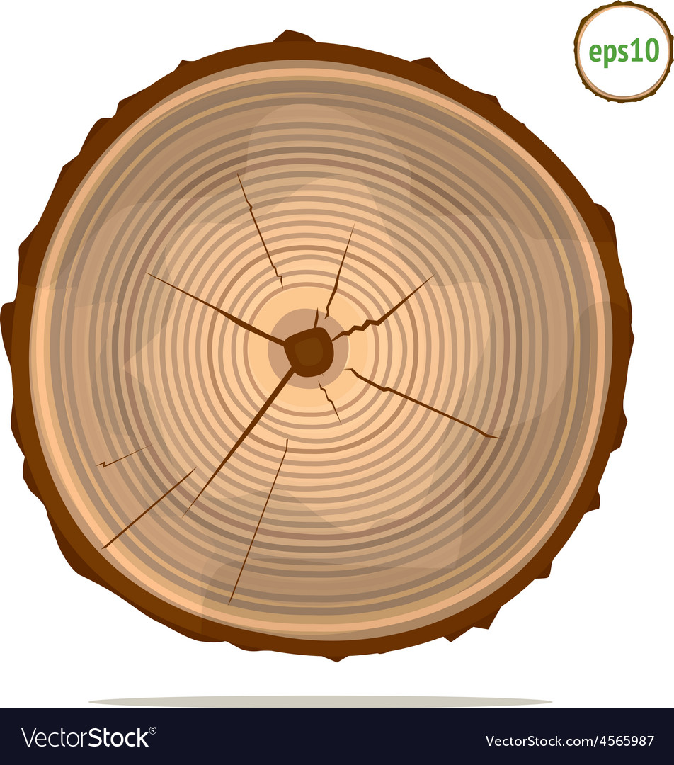 Tree-rings vector image