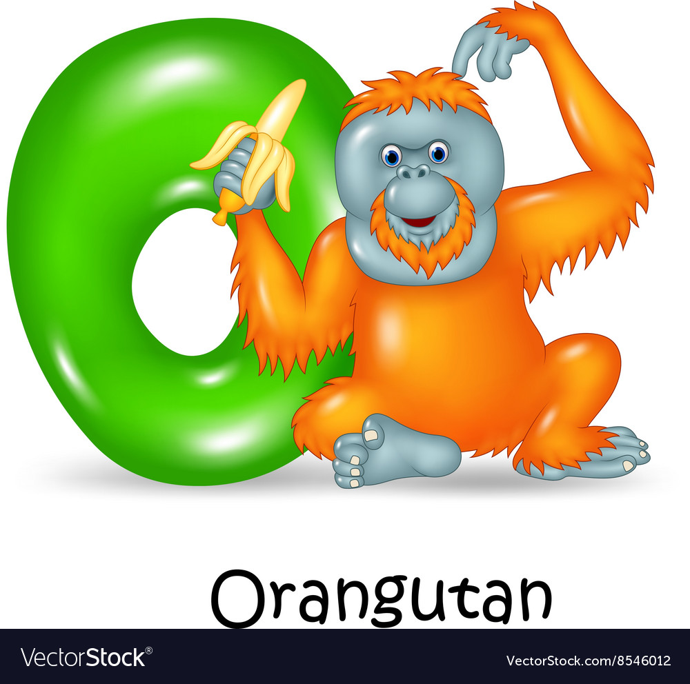 Orangutan Cartoon Cartoon of O Le...