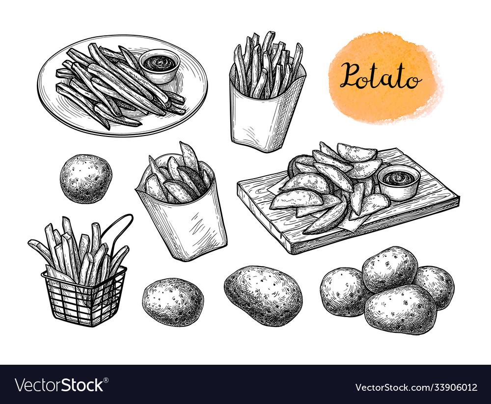 Ink sketch fried potatoes