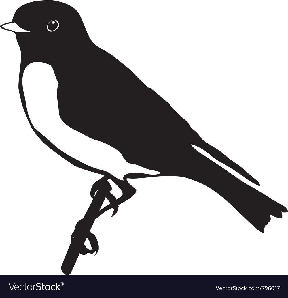 Black silhouette of bluebird vector image