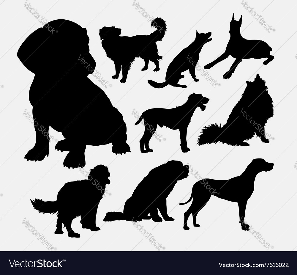 Little and large dog pet animal silhouette