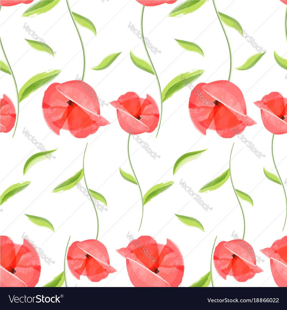 Red poppy flower romantic pattern