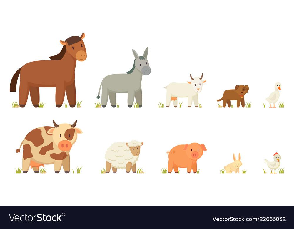 Farm animals set isolated on white