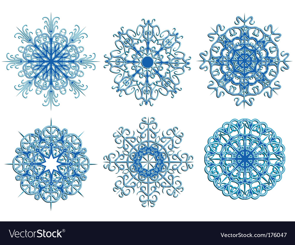 Winter ice snowflake vector image