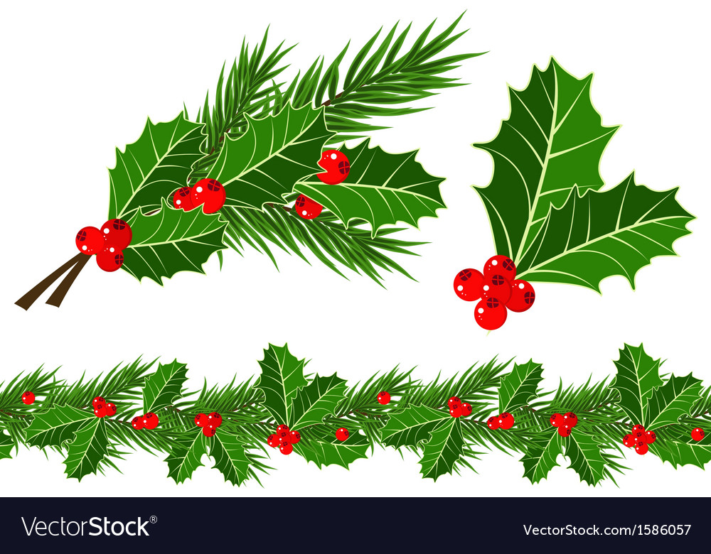 Holly leaves and berries vector image