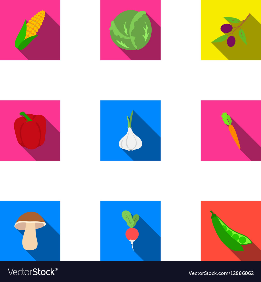 Vegetables set icons in flat style Big collection