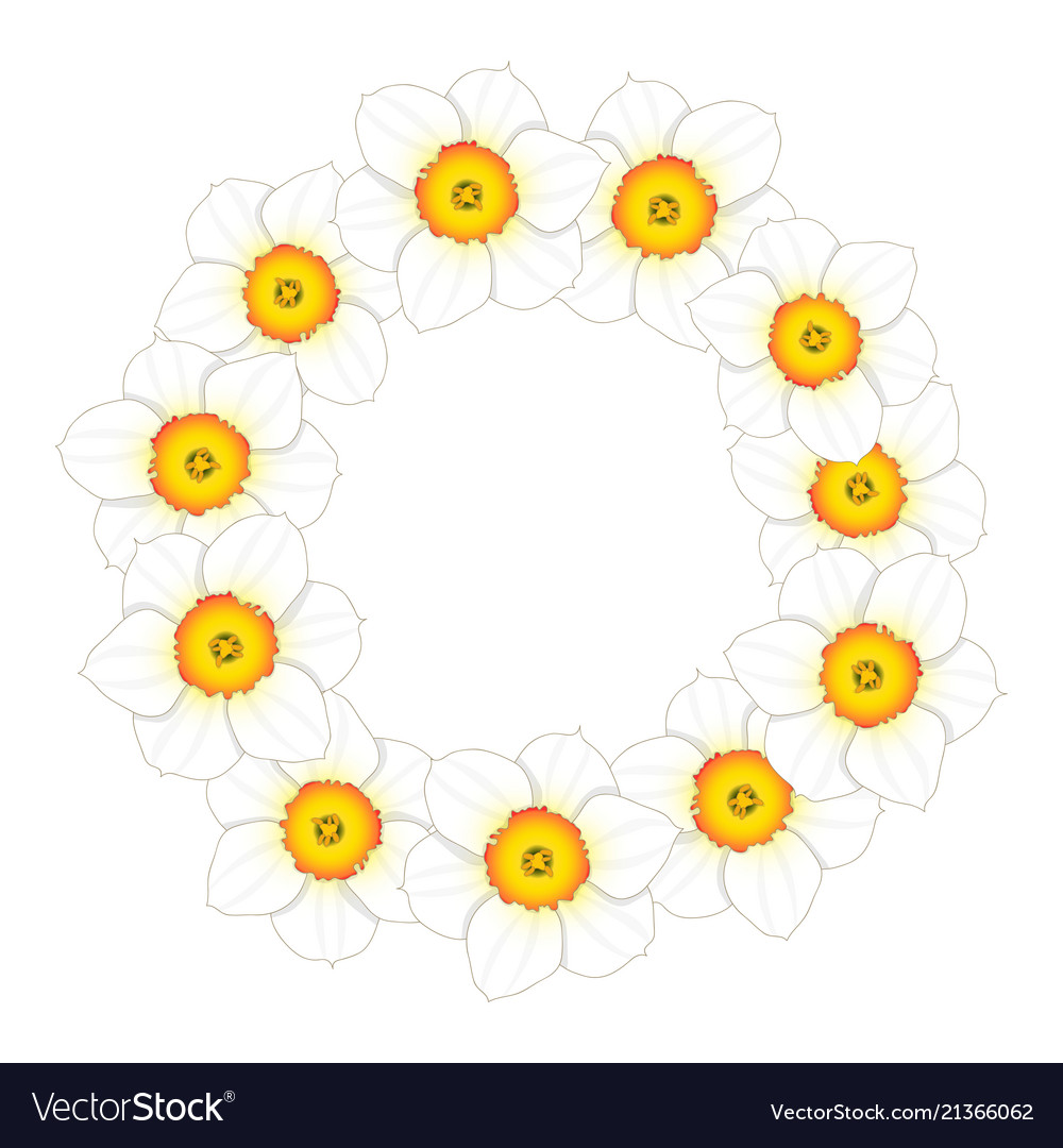 White daffodil - narcissus flower wreath